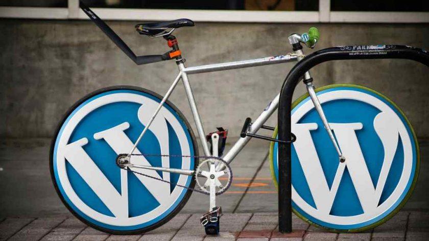WordPress Websites for Success
